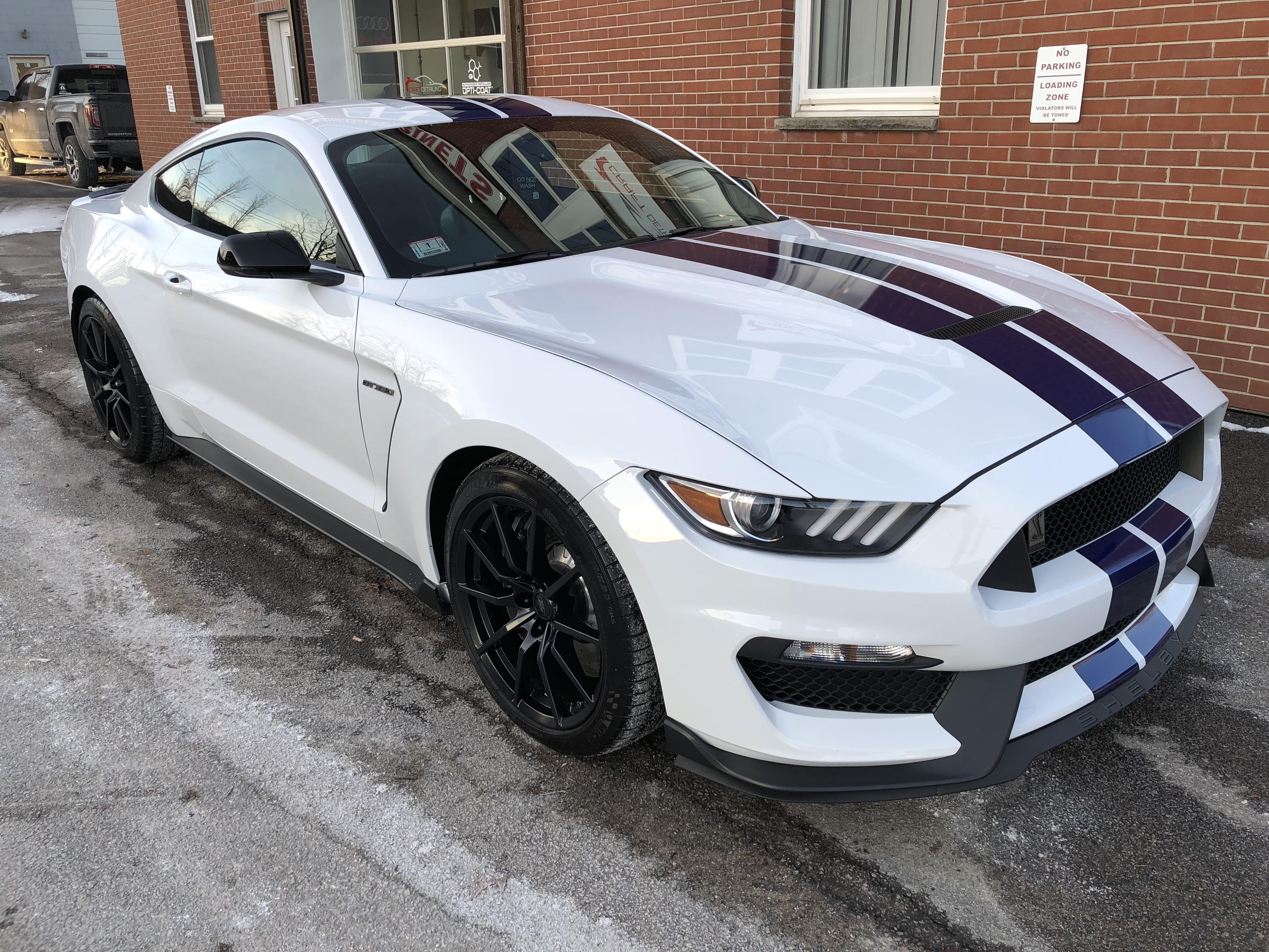 Opti Coat Pro >> 2017 Ford Mustang Gt350 Opti Coat Pro Plus And Xpel Ultimate